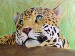 Good thoughtful leopard by Anastasya-Murashova