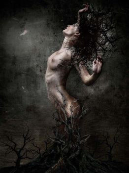 Tree Woman by agroeni