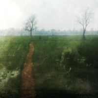 morning path by Migrena