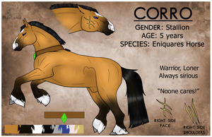Corro Reference Sheet by StarCanid