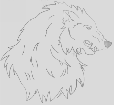 Snarling Wolf by Hannah29K9