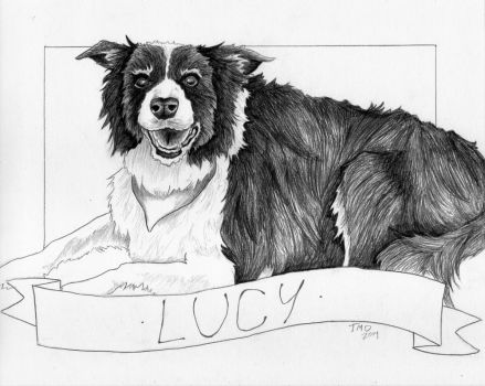 Lucy by breach-the-levee