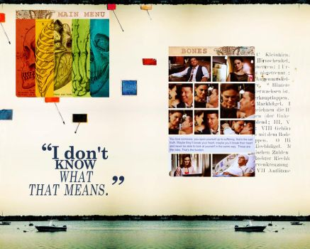 Do not know what that means by Bones-Brennan