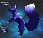 space doge: $5 by cambiarsi