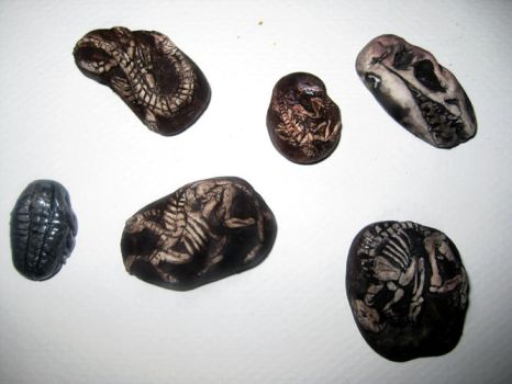 Fossils by ZellaL