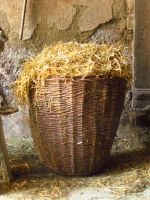 Basket full Straw 1 by KajaCamorra