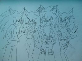 The crew by sira-the-hedgehog