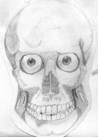 skull by cabs-bodge
