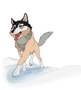 White Fang by TommyStims