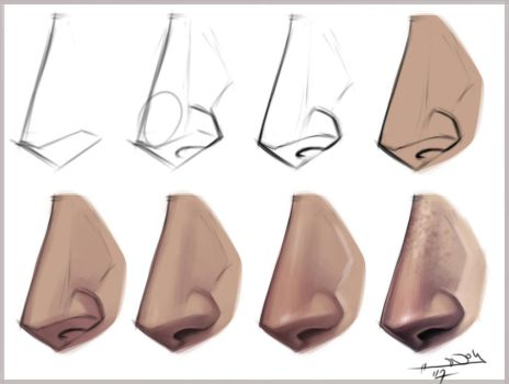 nose step by step. by Notesz