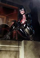 Catwoman Print PG-13 Version by OzWonderland