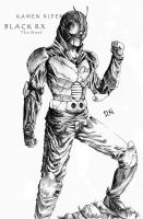 Kamen Rider Black RX The Next by hydendy