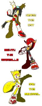 Sonic Riders - Team Relic by Trakker