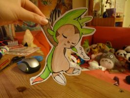 Welcome to the world [Chespin]