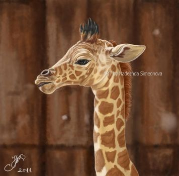 Baby Giraffe by Hopey-mean