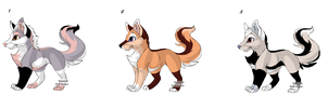 Wolf Point Adopts Batch 2 OPEN by Akssel-Adopts