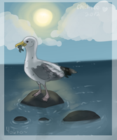seagull by Chickiee