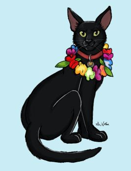 Finn the Hawaiian Cat by TheLivingShadow