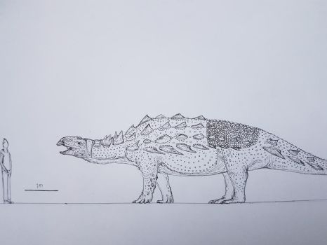 Most likely inaccurate giant nodosaur. by paleosir