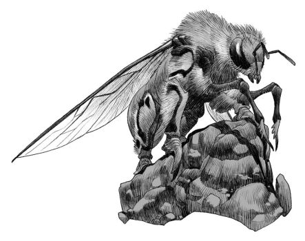 Griffon Bee by pietro-ant