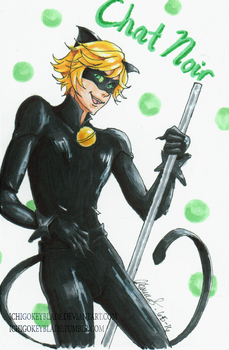 A Copic Chat Noir by IchigoKeyblade