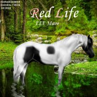 Red Life by midholly