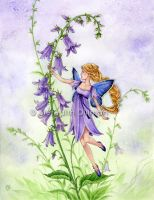 Fairy - Creeping Bellflower by MeredithDillman