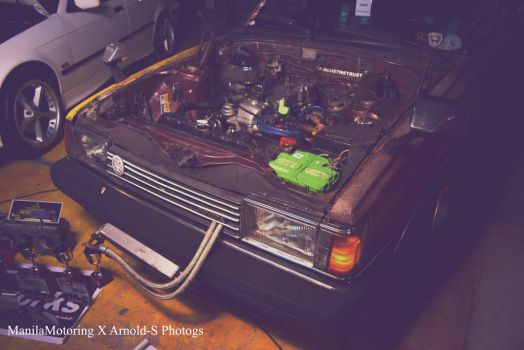 Cressida by Arnold-S-Photgs