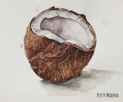 The coconut  by DustyModerns