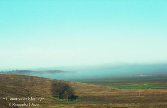 Countryside Morning by ruxi27