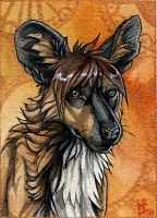 Golden - ACEO for Ashenee by wolf-minori
