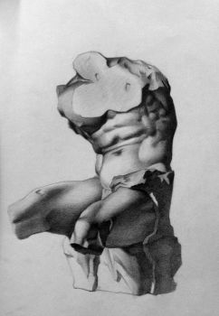 Belvedere Torso Study by jaqimages