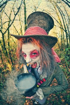 The Rude Hatter 1 by newspin