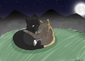leafpool and crowfeather by Keenah