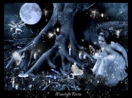Moonlight Fairies by nutella123