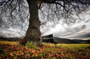 A place where you can sit by tomsumartin