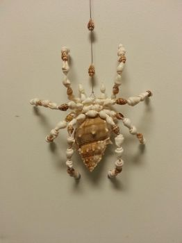 Seashell Spider by amberjackson1990