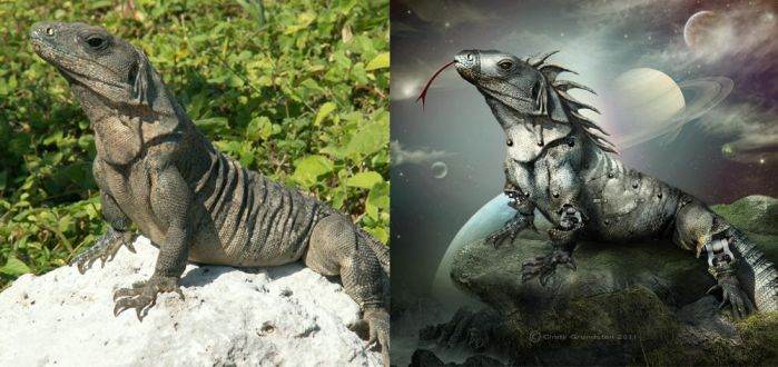 ReptileRobot before and after by CindysArt