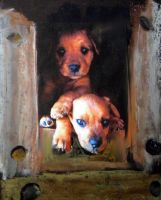 Puppies by D.D. byMojito24 by Hermione75
