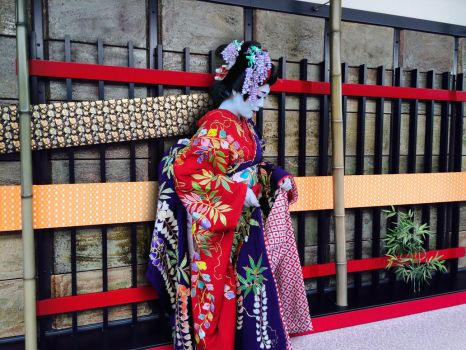 Maiko Attending Wedding by AndySerrano