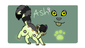 Ash Reference by CactusFruits