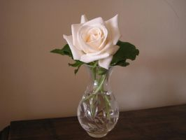 Rose Vase by stock-kitty