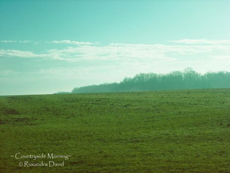 Countryside Morning 2 by ruxi27