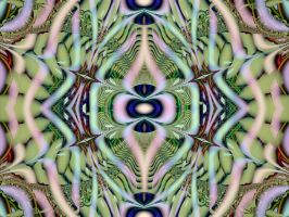Complex Vision by Thelma1