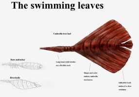 REP:The swimming leaves by Ramul