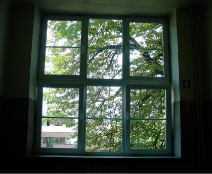 window and chestnut by eaneli