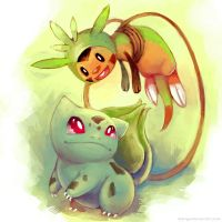 New Friends: Bulbasaur and Chespin