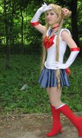 Sailor Moon S cosplay by smallchan