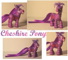 The Cheshire Pony by DeepDarkCreations