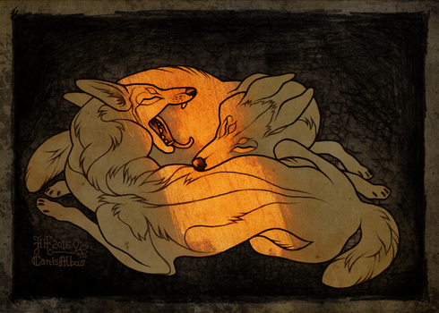 Recluses by CanisAlbus